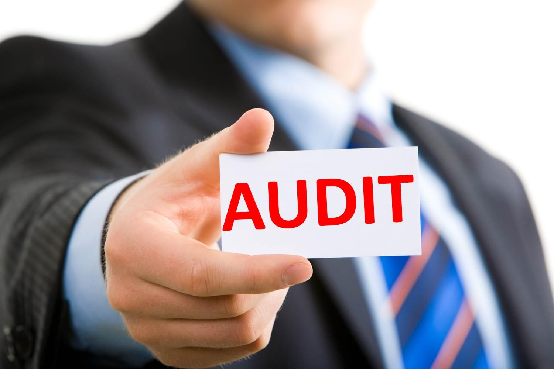 2014 irs audit stats cordasco company